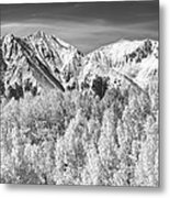 Colorado Rocky Mountain Autumn Magic Black And White Metal Print by James BO  Insogna