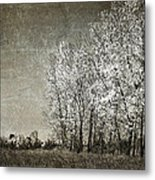 Colorless Fall Metal Print by Jeff Swanson
