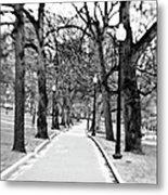 Commons Park Pathway Metal Print by Scott Pellegrin