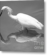 Concentration Metal Print by Carol Groenen