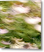 Coneflowers In The Breeze Metal Print by Paul W Faust -  Impressions of Light