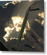 Conjuring Metal Print by Maurice Beebe