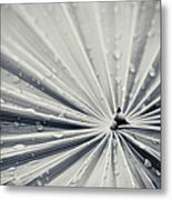 Convergence Metal Print by Adam Romanowicz