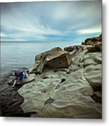 Cool To The Touch Metal Print by Mary Amerman