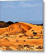 Coral Pink Sand Dunes Utah Metal Print by Christine Till
