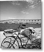 Coronado Bridge Bike Metal Print by Peter Tellone