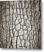 Cottonwood Bark 1 Metal Print by Marilyn Hunt
