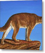 Cougar Cliff Metal Print by Crista Forest