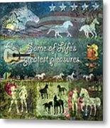 Country Pleasures Metal Print by Evie Cook