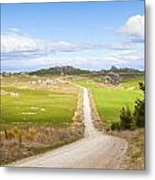 Country Road Otago New Zealand Metal Print by Colin and Linda McKie