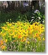 Countryside Cottage Garden 5d24560 Long Metal Print by Wingsdomain Art and Photography