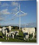 Cows And Windturbines Metal Print by Bernard Jaubert