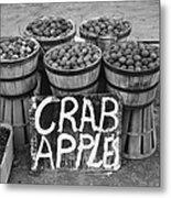 Crab Apples Metal Print by Digital Reproductions