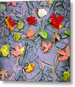 Cracked Mud And Leaves Metal Print by Inge Johnsson