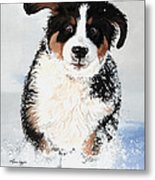 Crazy For Snow Metal Print by Liane Weyers