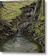 Creek  Metal Print by Janet Felts