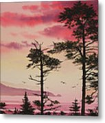 Crimson Sunset Splendor Metal Print by James Williamson