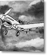 Curtiss P-40 Warhawk 2 Metal Print by Scott Nelson