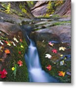 Cut Into Autumn Metal Print by Peter Coskun