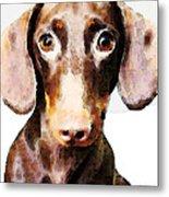 Dachshund Art - Roxie Doxie Metal Print by Sharon Cummings