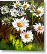Daisies Metal Print by Robert Carver