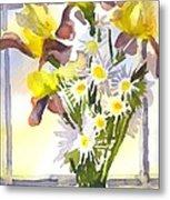 Daisies With Yellow Irises Metal Print by Kip DeVore