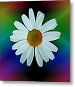 Daisy Bloom In Neon Rainbow Lights Metal Print by ImagesAsArt Photos And Graphics