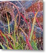 Dance Of The Wild Grass Metal Print by Feva  Fotos