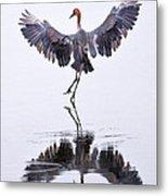 Dancing On Water Metal Print by Robert Jensen