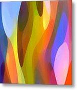 Dappled Light 3 Metal Print by Amy Vangsgard