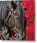 Dark Horse Against Red Dress Metal Print by Jennie Marie Schell