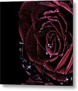 Dark Rose 2 Metal Print by Ann-Charlotte Fjaerevik