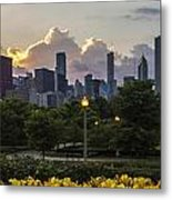 Day Lilys And Chicago Skyline In A 3 To 1 Aspect Ratio Metal Print by Sven Brogren