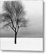 December 11 Metal Print by Doug Fluckiger