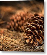 Deep In The Forest Metal Print by Jane Rix
