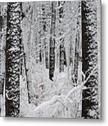 Deep Snow In The Forest Metal Print by Lynn-Marie Gildersleeve