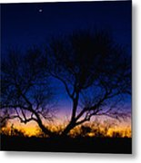 Desert Silhouette Metal Print by Chad Dutson