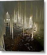Discovering The Light Metal Print by Sandra Updyke