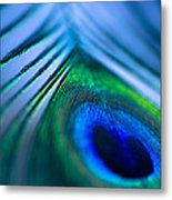 Do You Dream In Colour? Metal Print by Jan Bickerton