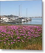 Docks At Sausalito California 5d22695 Metal Print by Wingsdomain Art and Photography