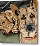 Dogs Metal Print by Karen Sheltrown