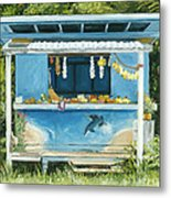Dolphin Bar Metal Print by Stacy Vosberg