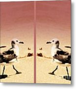Double Gulls Collage Metal Print by Susanne Van Hulst