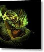 Dramatic Beauty Metal Print by Cecil Fuselier