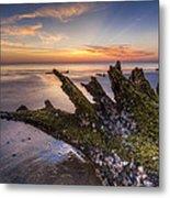 Driftwood On The Beach Metal Print by Debra and Dave Vanderlaan