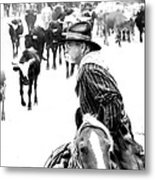 Drover At Work Metal Print by Fred Lassmann