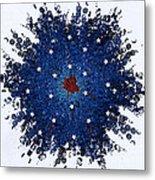 Dual Citizenship 1 Metal Print by First Star Art