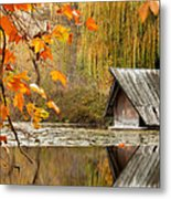 Duck's House Metal Print by Evgeni Dinev