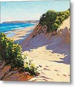 Dunes Central Coast Metal Print by Graham Gercken