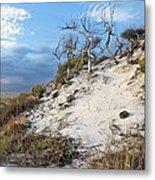 Dunes Of Santa Rosa Island Metal Print by JC Findley
